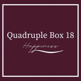 Quadruple Beer Box 18