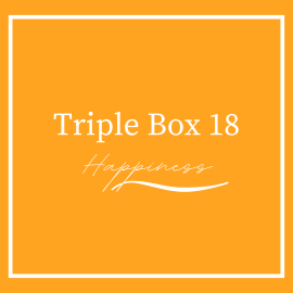 Triple Beer Box 18