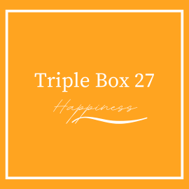 Triple Beer Box 27